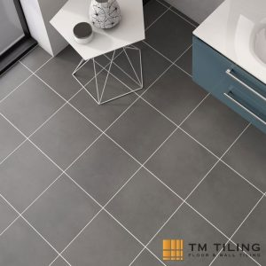 Ceramic tiles price tm tiling singapore