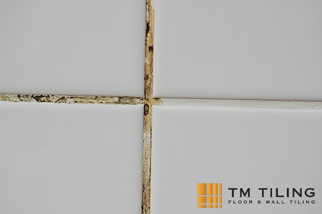 regrouting tm tiling contractor singapore